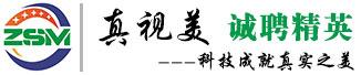 真视美视听设备(广州)有限公司